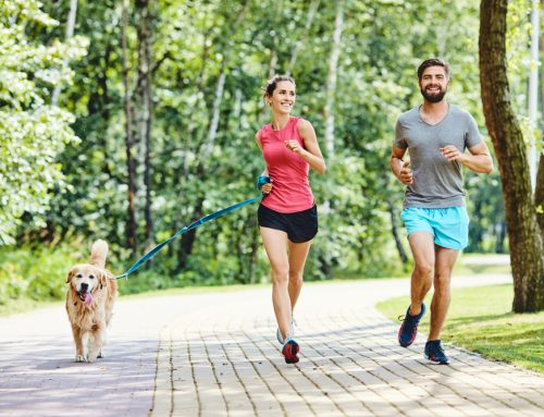 Jog with Your Dog or Hit the Mat With Your Cat: Staying Active with Your Pet