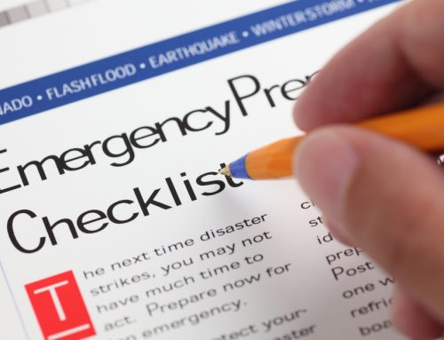 Exit Strategy—5 Ways to Include Your Pet in Your Disaster Plan